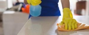impresa di pulizie rho
